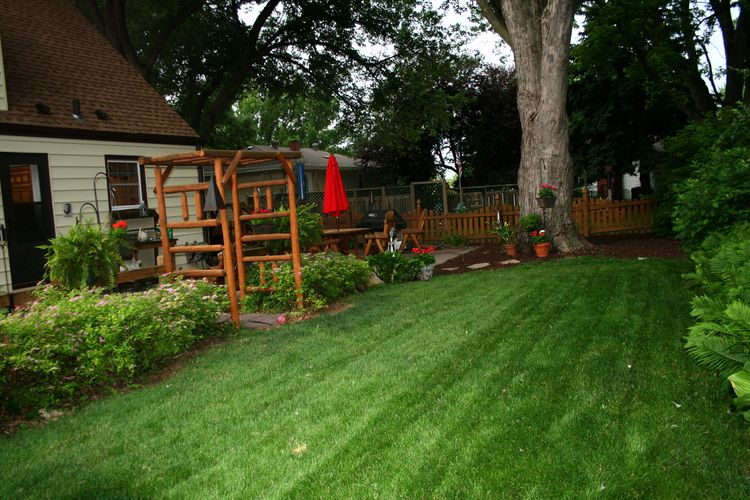 Backyard view